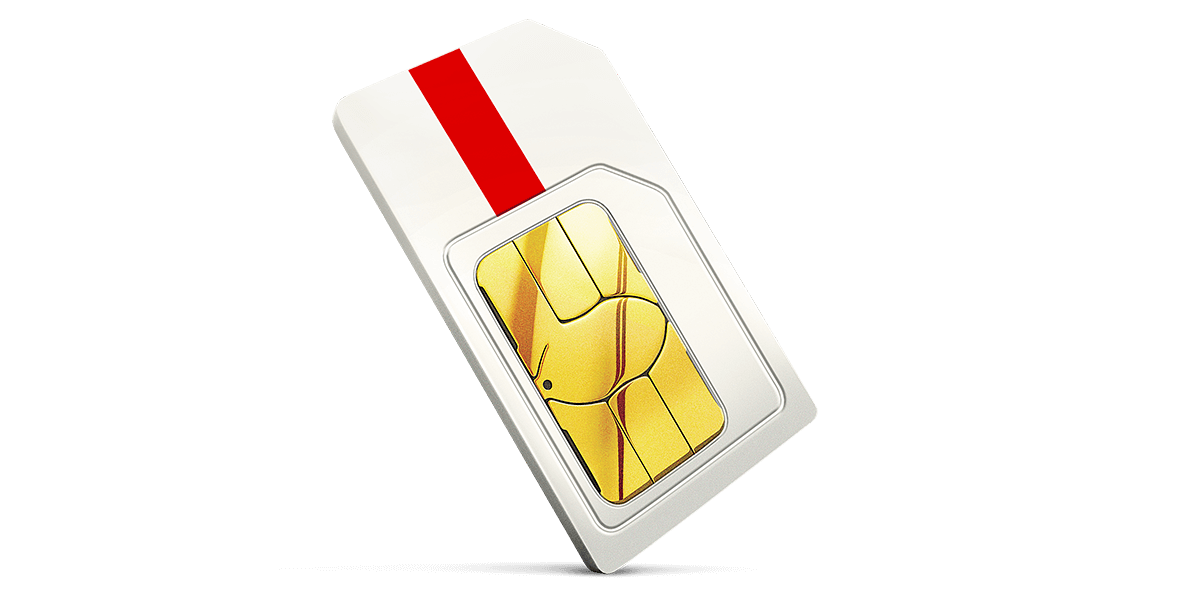 Most popular Data-only SIM