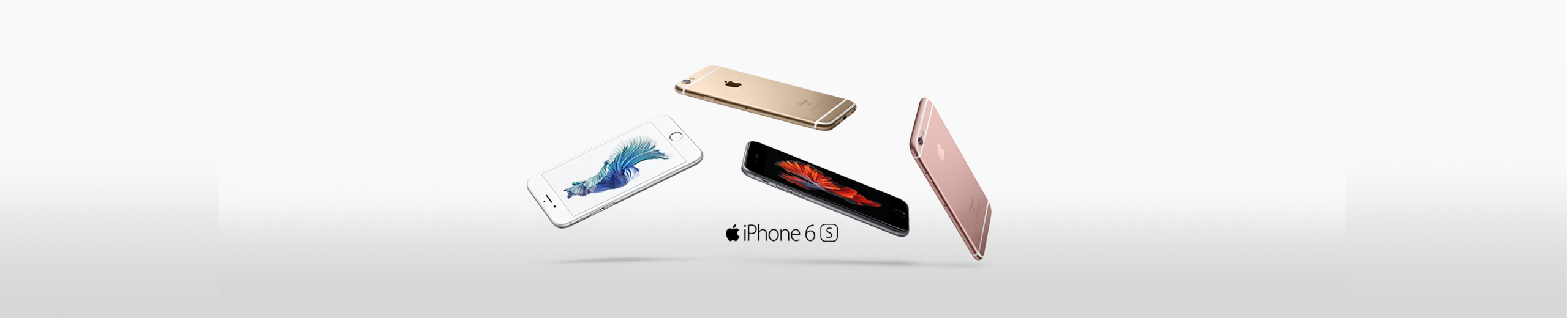 iPhone 6s Businness Banner