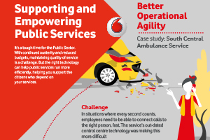 Public Sector Infographic
